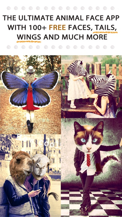 Animal Face - Cat stickers for your photos and more