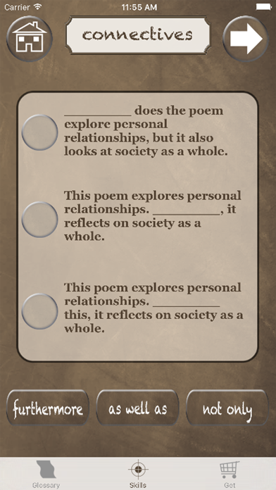 English Literature Success screenshot four