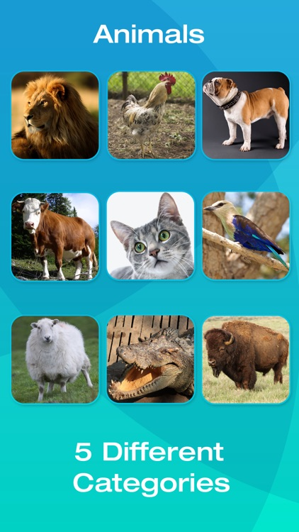 Animal and Tool Flashcards for Babies or Toddlers screenshot-3