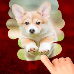 cool dog games