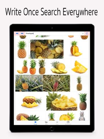 Screenshot #6 pour Universal Image Search Pro