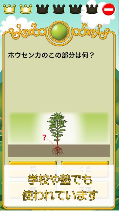 ビノバ 理科-小学生,3年生- 植物や昆虫をドリルで暗記スクリーンショット2