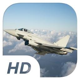 FlashBear - Flight Simulation