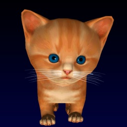 Cute kitten virtual pet, your own kitty to take care