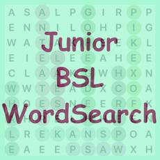 Activities of BSL WordSearch Junior
