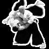 Aikido Master Class