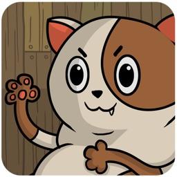 Whiz Kitty