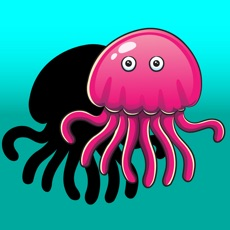 Activities of Sea animal Who I am