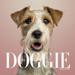 11.A+ The Doggie Magazine App - Dog Training, Obedience, Tips, Guides, Games & More For Your Puppy