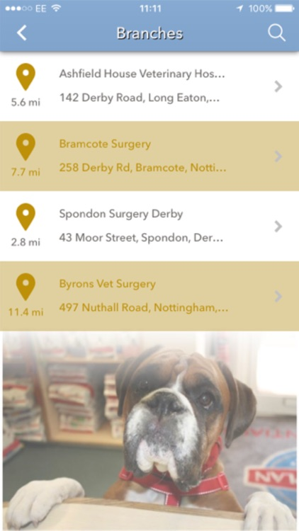 Ashfield Veterinary Hospital