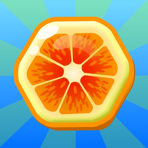Fruit Shake - Original Twisted Puzzle