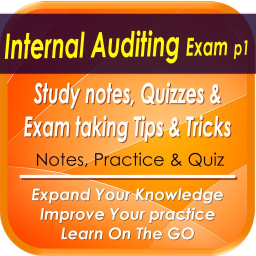 Internal Audit Exam Part1: 300 Study Notes, Quiz & Exam Tips & Tricks by  Karim SLITI