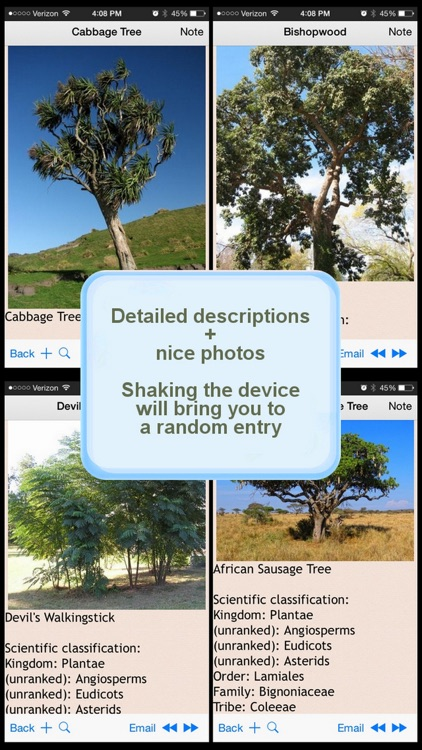 The Complete Trees Directory