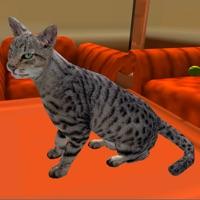 Codes for Super Cat 3D Hack