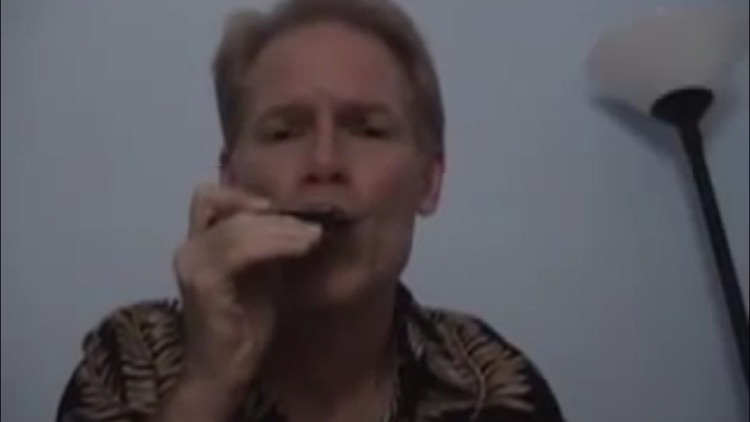 Play The Blues On Harmonica screenshot-4