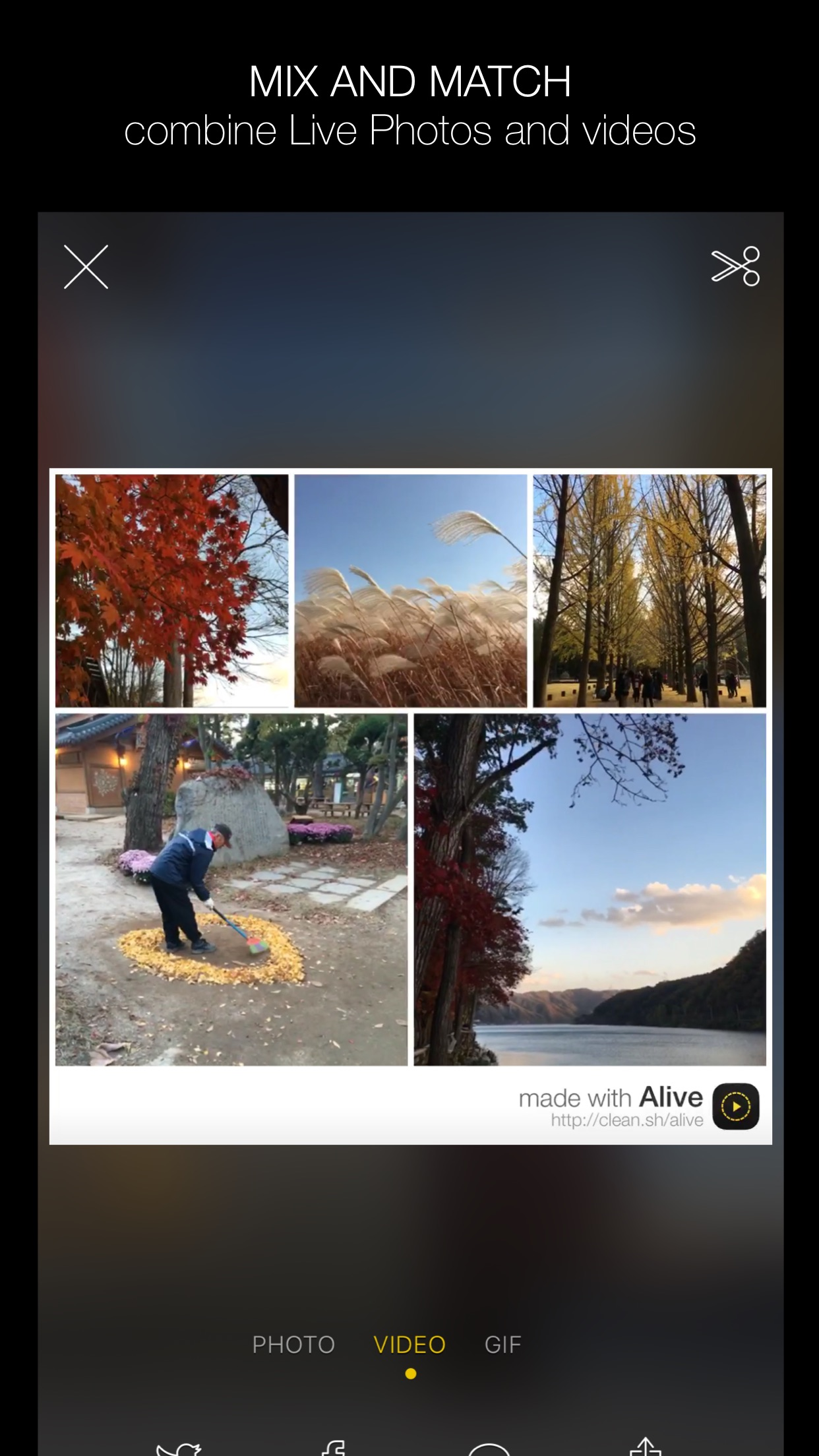 Screenshot do app Alive - Create & Share Animated Collages for Live Photos and Videos