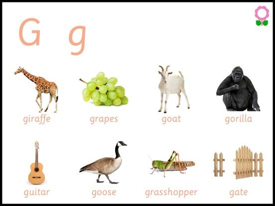 Alphabets Vocabulary Book for Kids (Preschool, Montessori & Kindergarten Education)-ipad-1