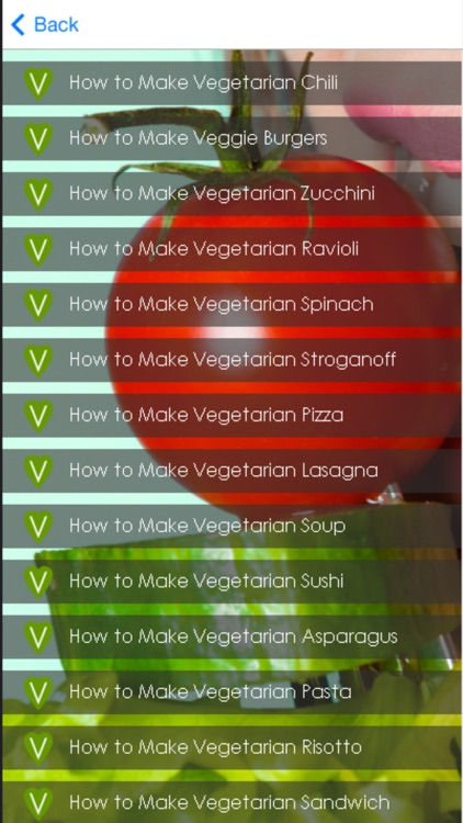 Vegetarian Meal Recipes - Healthy Vegetarian Tips screenshot-4