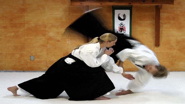 Aikido 2016 screenshot-3
