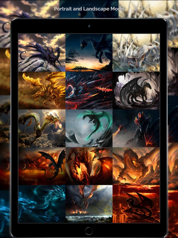 Dragon Wallpapers & Backgrounds + Amazing Fire Wallpaper Free HD-ipad-4