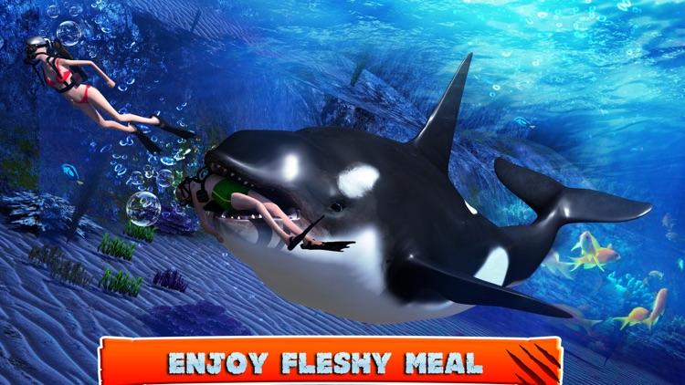 Killer Whale Beach Attack 3D screenshot-3