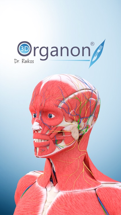 3D Organon Anatomy - Skeleton, Bones, and Ligaments screenshot-4
