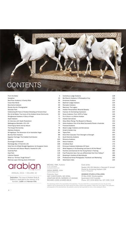 Arabian Studs and Stallions screenshot-4