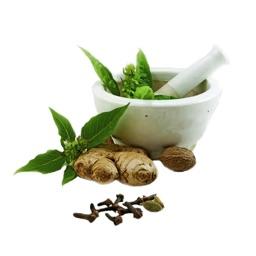 Natural Ayurvedic Healer Free