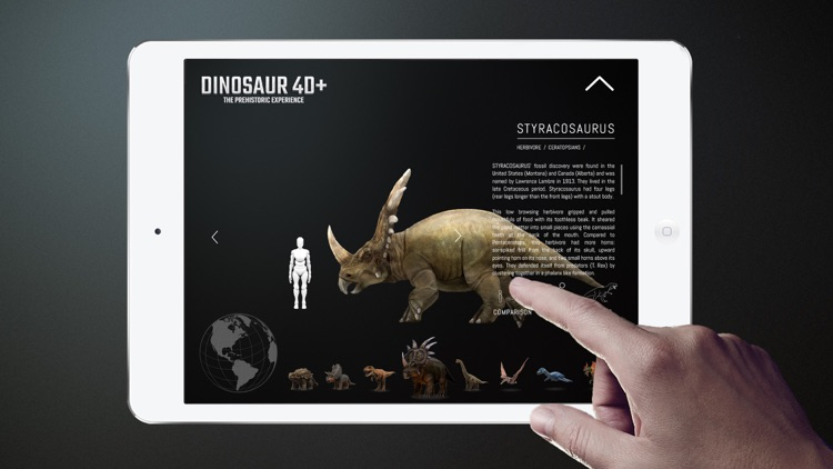 Dinosaur 4D+ screenshot-4
