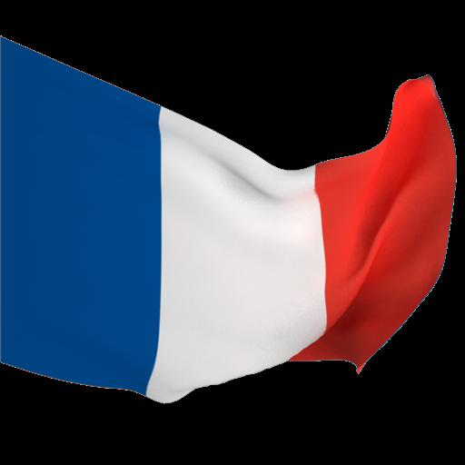 Французский за месяц