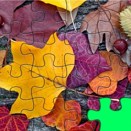 Jigsaw Leaves A Lovely Jiggy Packs Puzzles Leafy Images