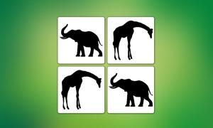 Animals - Matching Game