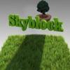 Skyblock : Survival Mini Game with 3D blocks iPhone / iPad
