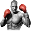Real Boxing™ - Vivid Games S.A.