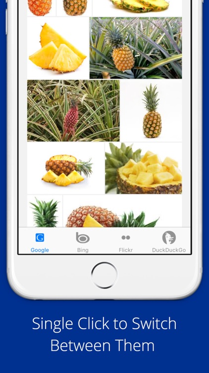Universal Image Search Pro screenshot-3