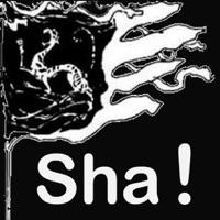 Codes for Sha!-HD Hack