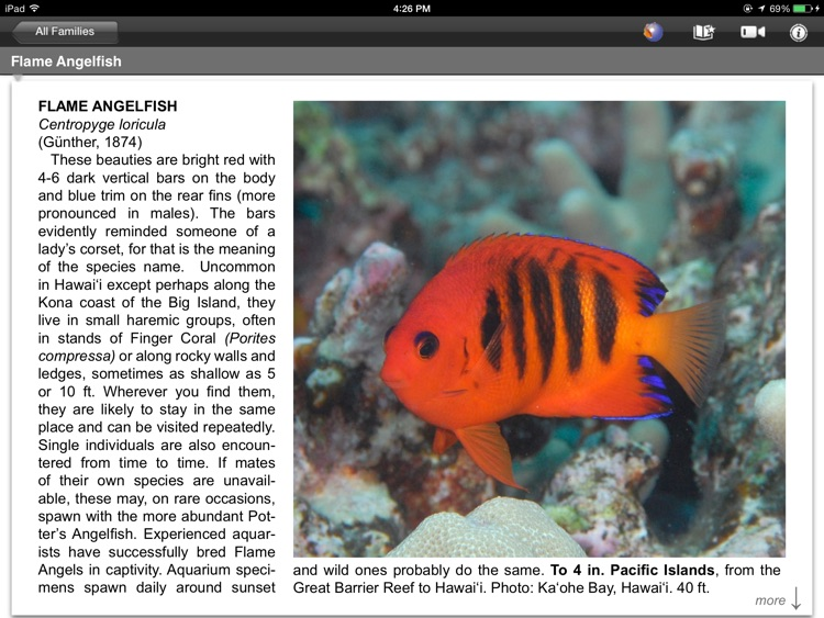 Fish ID Hawaii pro screenshot-0