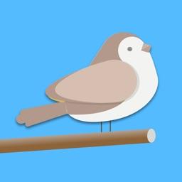 Bird Trivia - Word Quiz Game