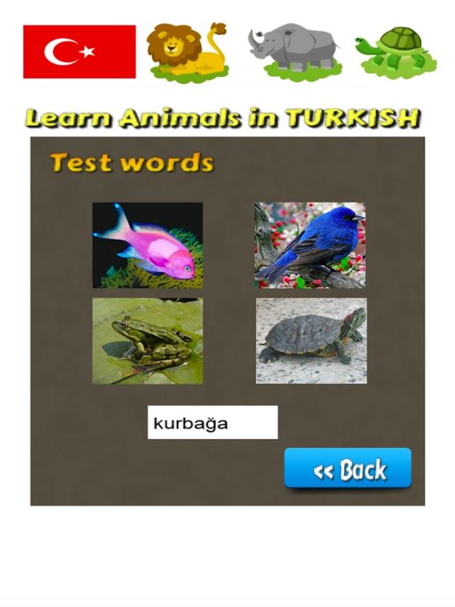 learn animals in turkish language im app store