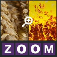 Codes for Zoom Quiz - Guess what is the picture, new fun puzzle! Hack