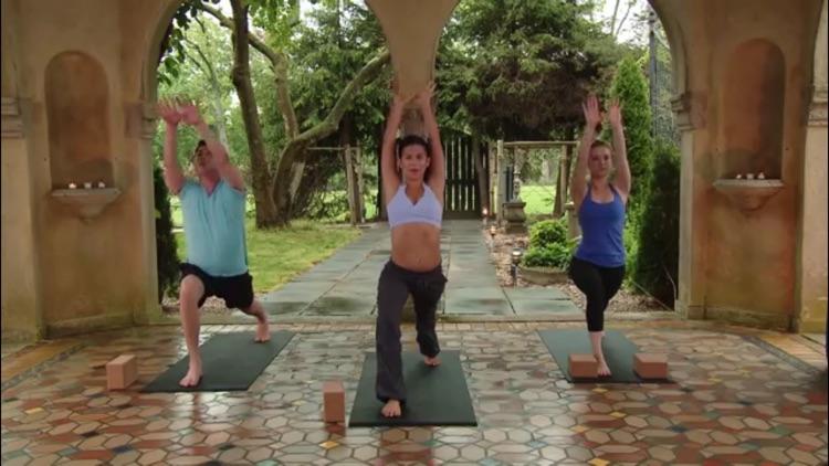 Yoga Master Class screenshot-3
