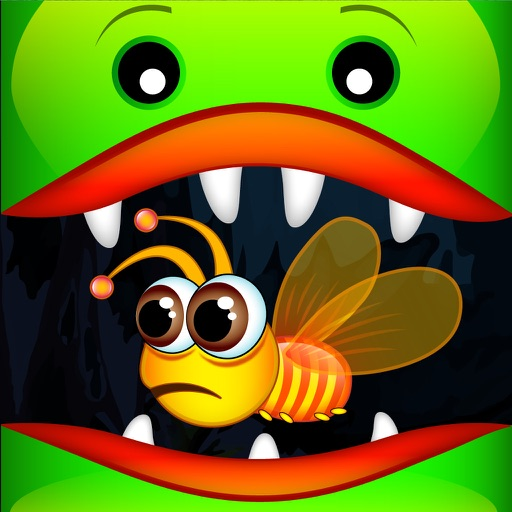 Fly Trap - Save the Bee