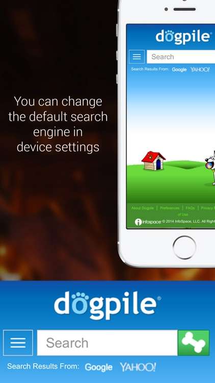 Private Browser for iPhone with Full Screen screenshot-4