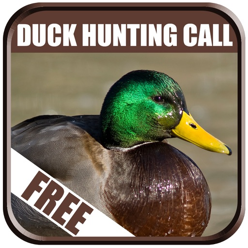 Duck Hunting Calls Free