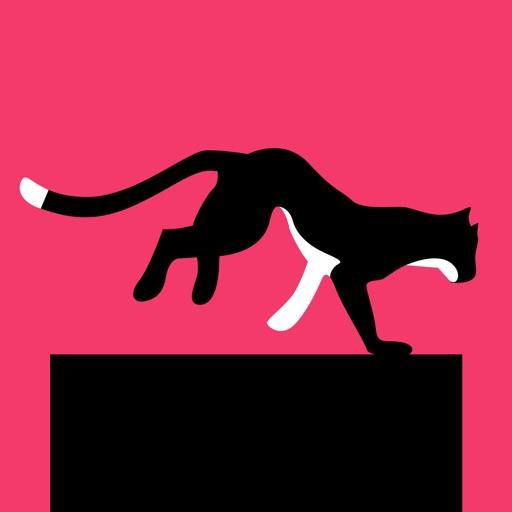 Cat Hero - Grumpy Kitten Bridge