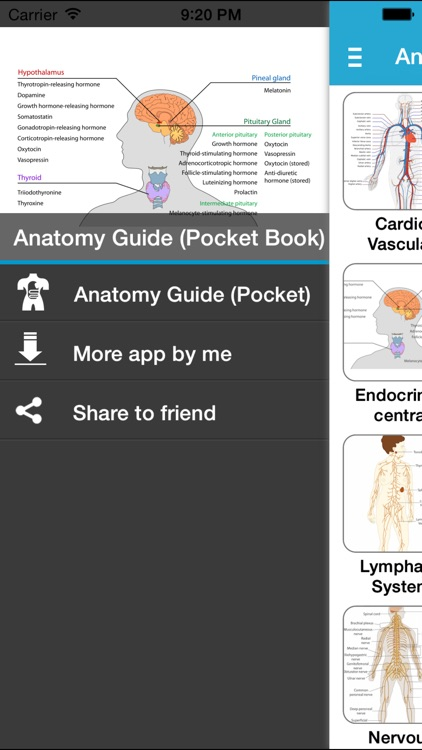 Anatomy Guide (Pocket Book)