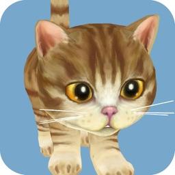 Dancing Cat Simulator