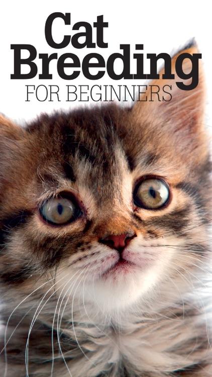 Cat Breeding For Beginners