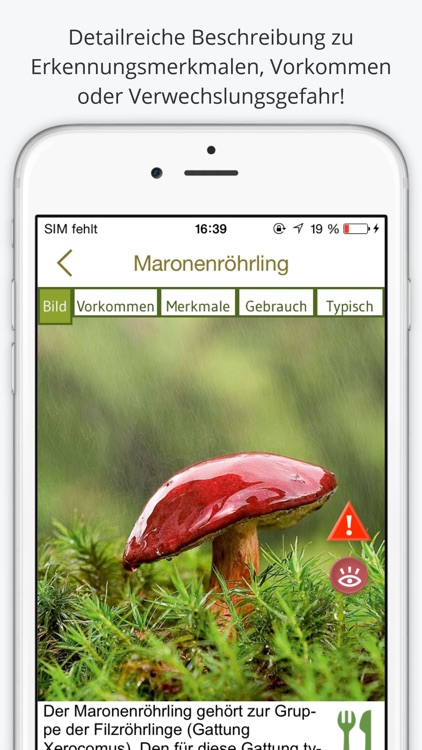 Pilze bestimmen - erleben Sie die Natur und lernen Sie, die 100 wichtigsten heimischen Pilzarten zu unterscheiden