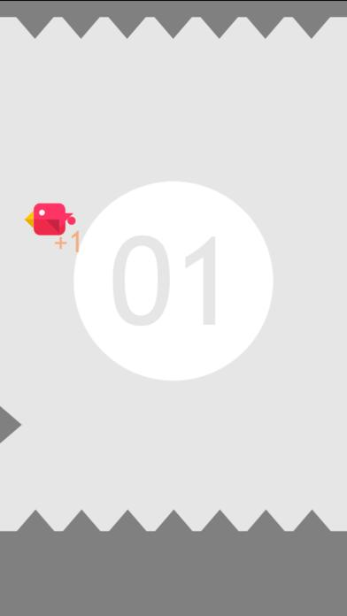 点击获取#Bird